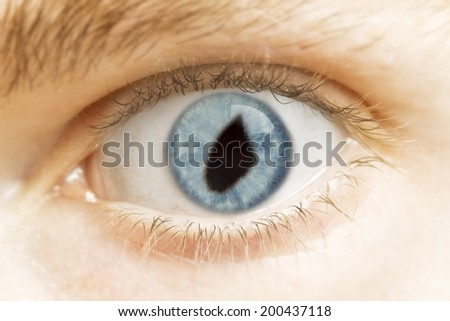 A close-up of an eye with the pupil in the shape of Djibouti.(series)