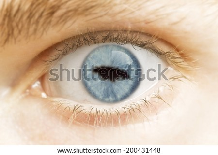 A close-up of an eye with the pupil in the shape of Jamaica.(series)