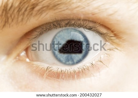 A close-up of an eye with the pupil in the shape of Jarvis Island.(series)