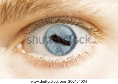 A close-up of an eye with the pupil in the shape of Nepal.(series)