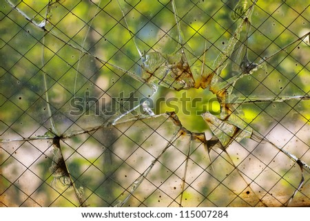 A close up of broken old safety glass with a hole and many cracks and chips out of it. - stock photo