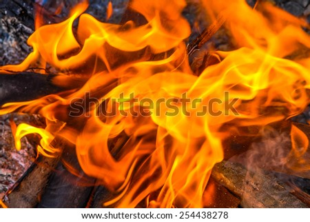 A close up of the aflame wood in bonfire. - stock photo