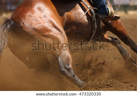 A close up photo of a horse sliding in the dirt showing mostly the hip.