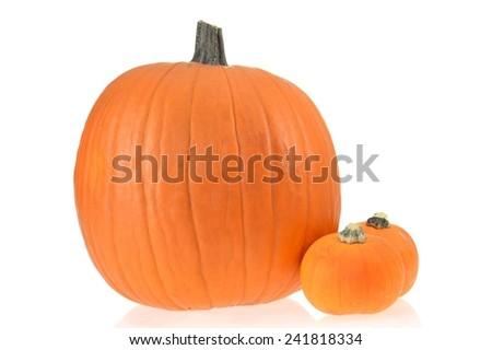 A close up shot of a halloween pumpkin - stock photo