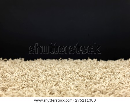 a close up shot of shag carpet