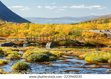 A closer look at colorful northern taiga forest with rocky glade behind a freshwater lake in Malaya Belaya river valley, Hibiny mountains above the Arctic Circle, Russia - stock photo