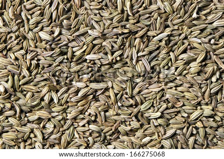 A closeup of fennel seeds (the background)