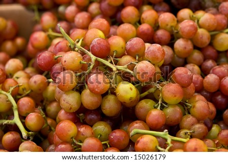 A closeup of ripe red muscat grapes