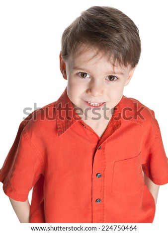 A closeup portrait of a cute little boy on the white background - stock photo