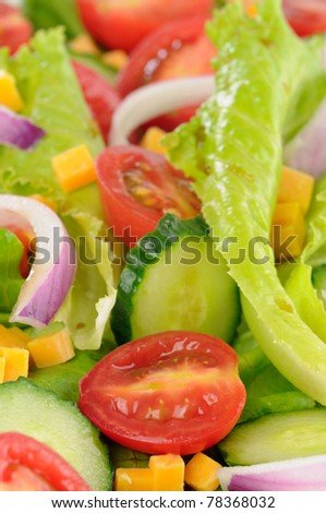 A closeup view of a fresh vegetable salad.