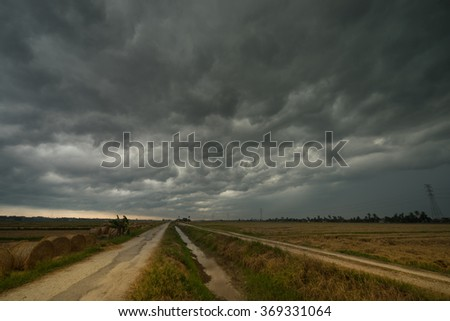 A cloudy scenery with rolls of haystack in paddy fields