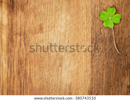 a clover on wooden desk, shamrock - stock photo
