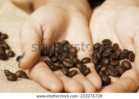 A coffee importer showing the buyer a handful of this delightful brew. - stock photo