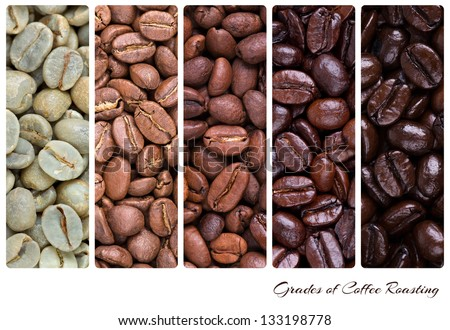 A collage of coffee beans showing various stages of roasting from raw through to Italian roast - stock photo