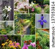 A collage of garden images - stock photo