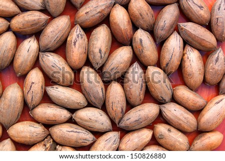 A collection of regular un shelled pecan nuts on a red background