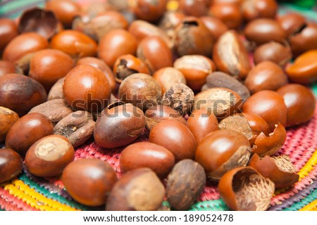 A color image of Shea nuts.  - stock photo