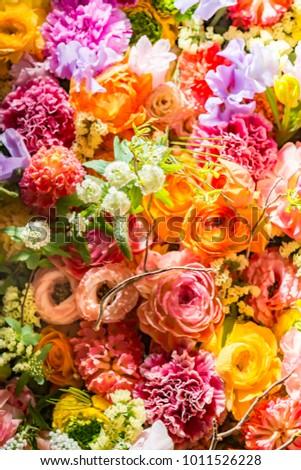 Colorful beautiful flower wall 1011527071 shutterstock a colorful and beautiful flower wall voltagebd Gallery