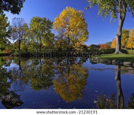 A colorful autumn day - stock photo