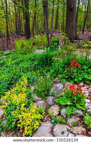 A colorful backyard woodland garden. - stock photo