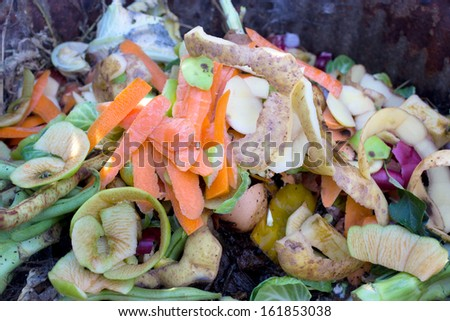 A colorful collection of kitchen and garden waste on the compost heap. - stock photo