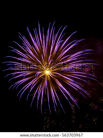 A colorful fireworks display in the night sky on July 4th 2010 in Tonopah Arizona.