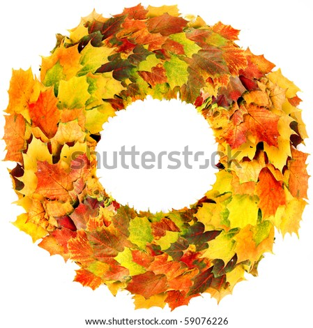 A colorful wreath of autumn leaves of maple isolated on white background - stock photo