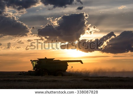 A combine harvesting wheat in a large field at sunset.
