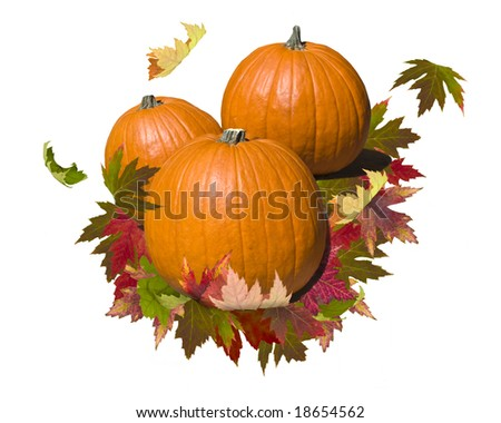 A composition of three pumpkins on a bed of autumn leaves.