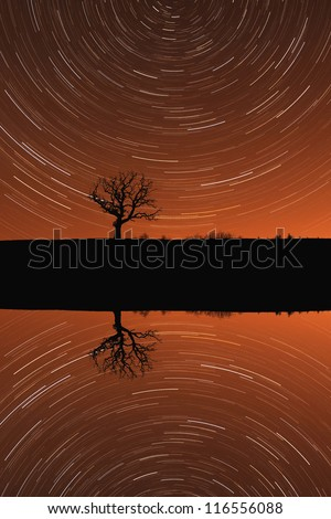 A concept of a single tree silhouette on a lake, in the night, with star trail mirror reflection - stock photo