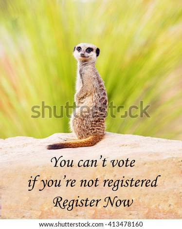 A concept photograph of a meerkat concerning the forthcoming elections; reminding voters that in order to be allowed to vote they must be registered to vote.  - stock photo