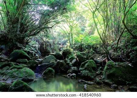 A cool refreshing pond of clear peaceful water protected in a mysterious forest with sunlight shining through lush greenery & reflections of emerald color ~ Beautiful river scenery of Taiwan in spring - stock photo