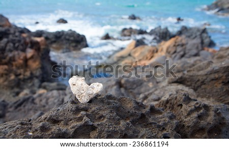 a coral heart closeup with lava flow and ocean in the background  - stock photo