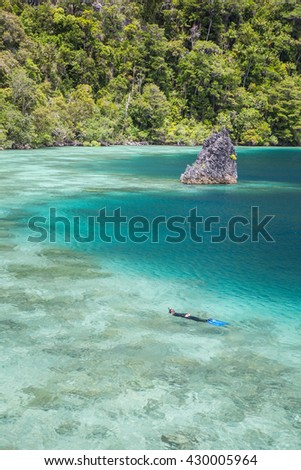 """A coral reef fringes limestone islands in Raja Ampat, Indonesia. This remote region is home to more marine species than anywhere else on Earth and is known as the """"heart of the Coral Triangle."""" - stock photo"""
