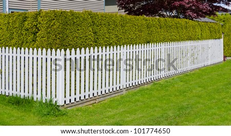 A corner of white fence with nicely trimmed bushes. - stock photo