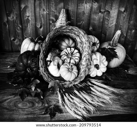 A cornucopia with squash, gourds, pumpkins, wheat and leaves on an old antique table.  Processed in Black and White.  - stock photo