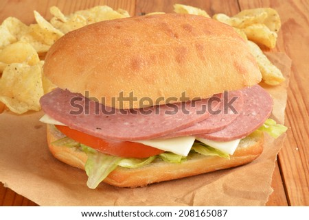 A cotto salami and swiss cheese sandwich on a telera bun