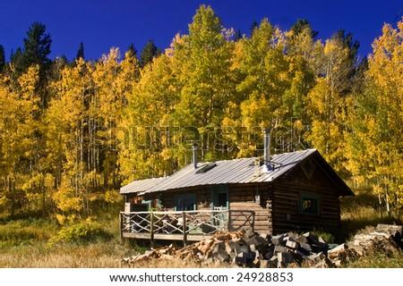 Country cabin colorado autumn aspen trees stock photo for Cabine colorado aspen