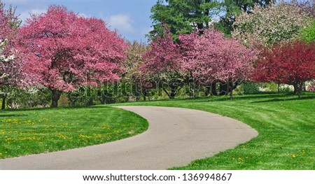 A country path winding through green grass bordered with spring crabapple trees in full blossom.
