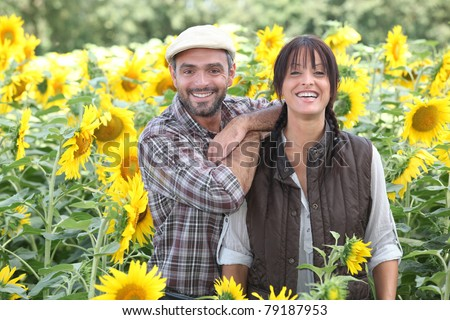 a couple of farmers in a sunflowers field - stock photo