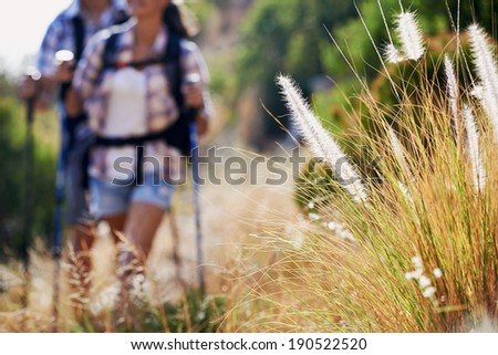 A couple walking along a hiking trail with selective focus on wilderness plantation - stock photo