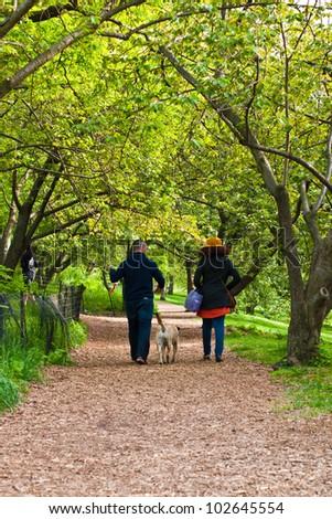 A couple walking their dog through a Central Park path. - stock photo