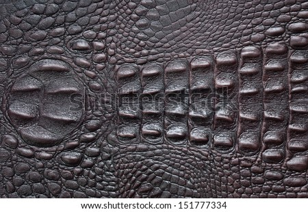 A Crocodile Texture Leather, Dark Brown  Background - stock photo