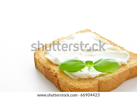A crusty toasted bread with cheese and a basil leave isolated on a white background