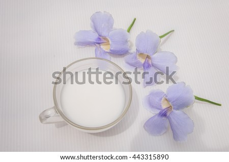 A cup of milk around with violet flowers with whiten background - stock photo