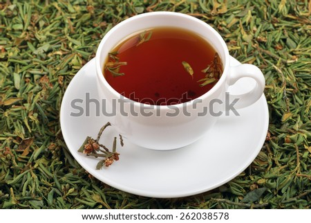 A cup of tea with the addition of herb against the background Rhododendron adamsii - stock photo