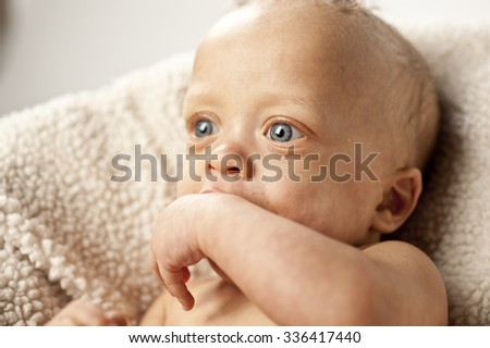 A cute baby isolated on a white background.