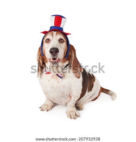 A cute Basset Hound dog sitting and looking at the camera while wearing a red, white and blue Independence Day themed hat and tie