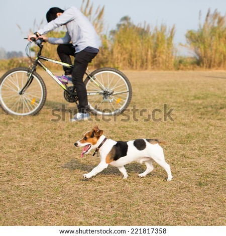 A cute dog walk with a boy on the bicycle  - stock photo