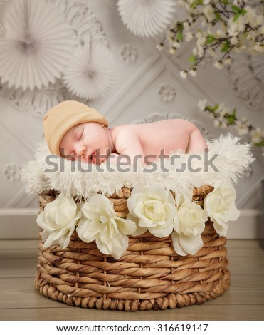 A cute newborn baby is sleeping in a basket with white flowers and a texture wall background for a photography portrait or love concept.